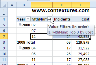 More Than One Filter on Pivot Table Field – Contextures Blog