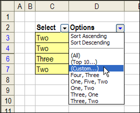 AutoFilter For Multiple Selections