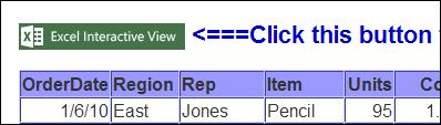 interactive Excel view