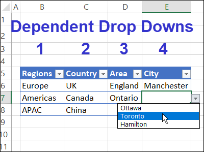 Multiple Dependent Drop Downs